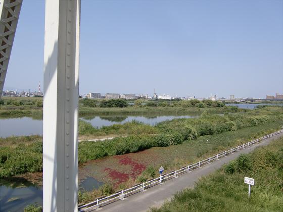 赤川仮橋2013年7月8月-23