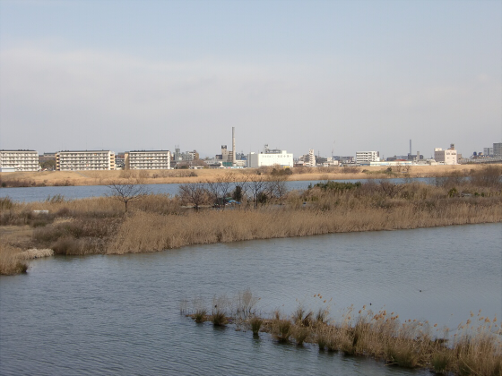 城東貨物赤川橋梁2013-03