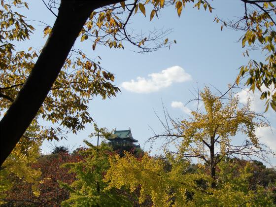 青い大阪城2011_02