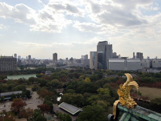 青い大阪城2011_17