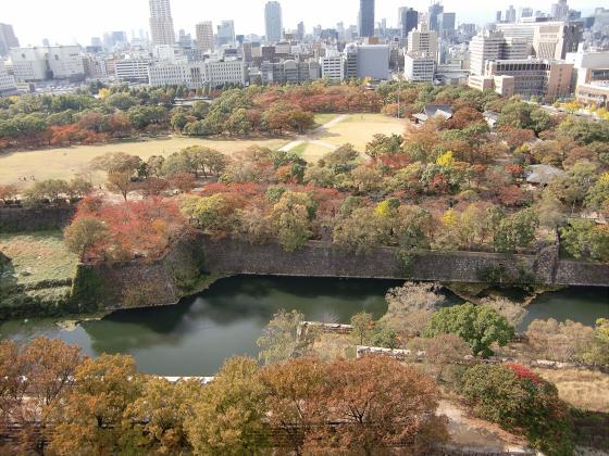 青い大阪城2011_20