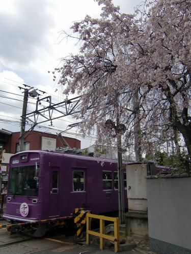 いざ仁和寺へ~嵐電~01