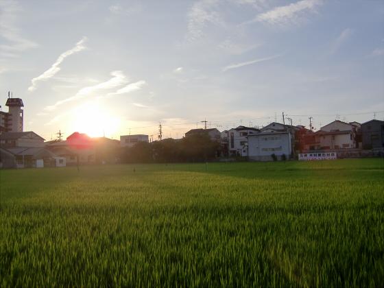 京阪の寝屋川車庫へ03
