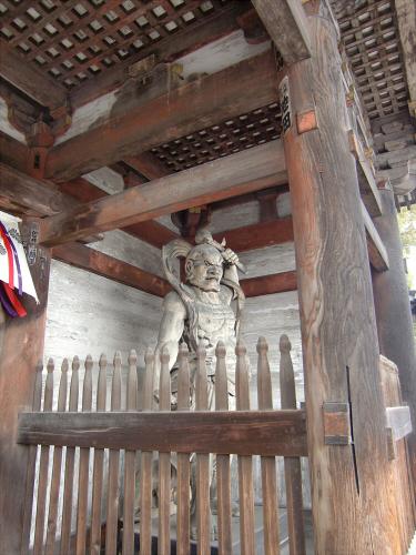 仁和寺の御室桜02