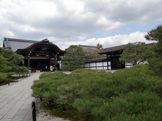 仁和寺の御室桜08