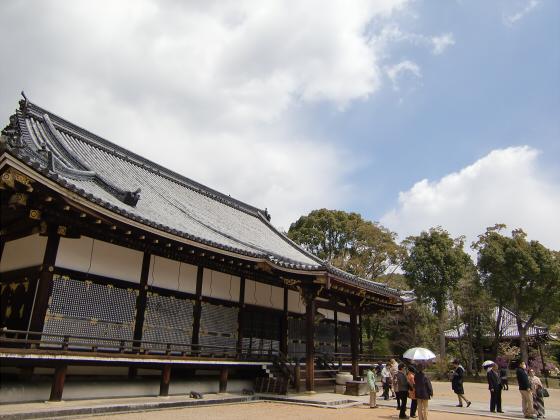 仁和寺の御室桜37