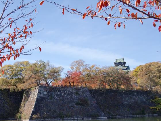 大阪城の紅葉2012-12