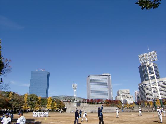 大阪城の紅葉2012-13