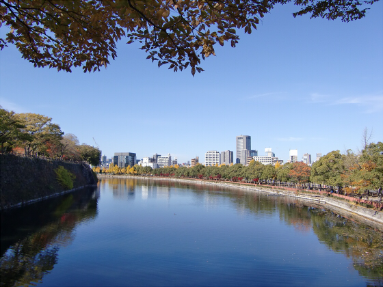 大阪城の紅葉2012-15