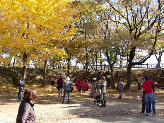 大阪城の紅葉2012-17
