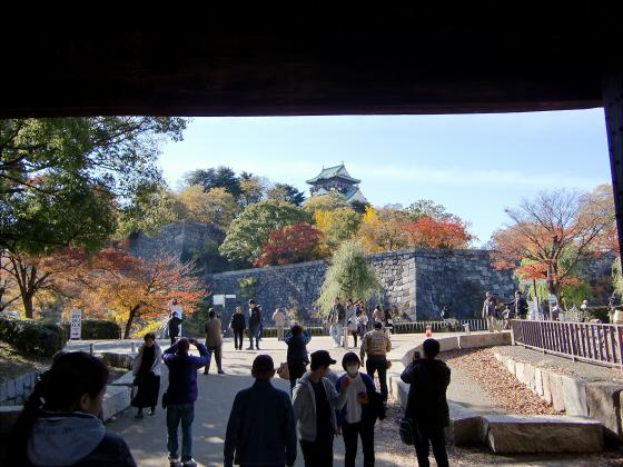 大阪城の紅葉2012-18