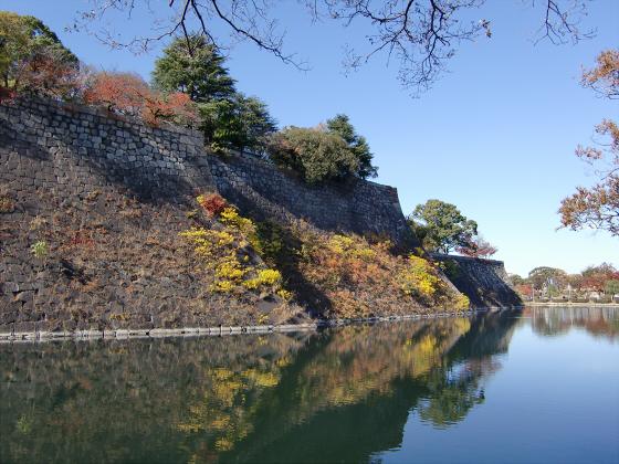 大阪城の紅葉2012-20