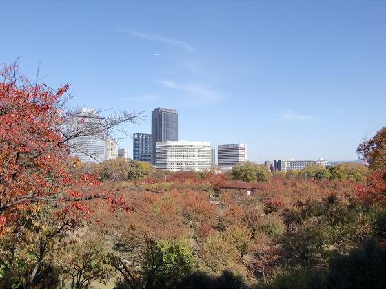 大阪城の紅葉2012-26