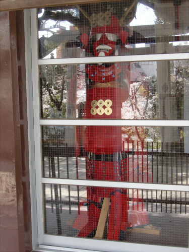 三光神社の桜2013-05