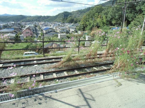 桜谷軽便鉄道37