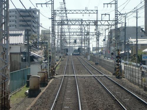 桜・京阪・かぶりつき06