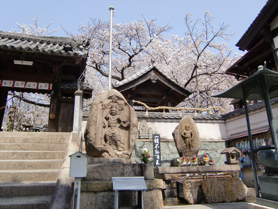 天下茶屋の聖天さんの桜02