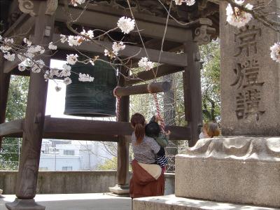 天下茶屋の聖天さんの桜15