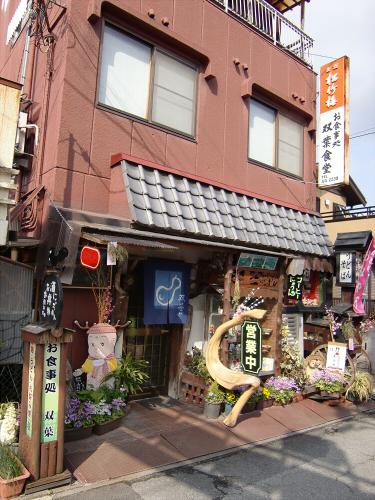 壺阪山「町家の雛めぐり」01