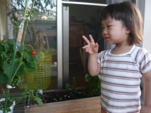 tomatonoshuukaku3.jpg