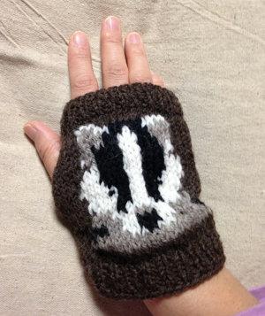 20141022 アナグマ手袋