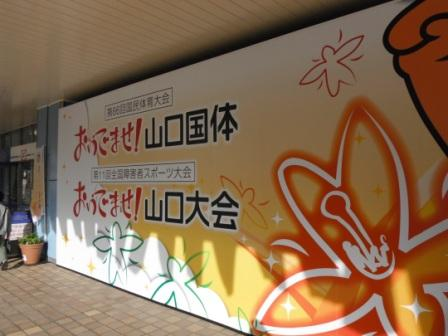 2011_10020020.jpg