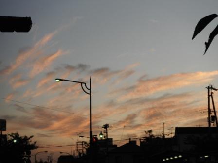 2011_10040013.jpg