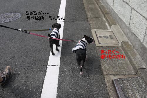 P1050648譁・ュ誉convert_20110926224050