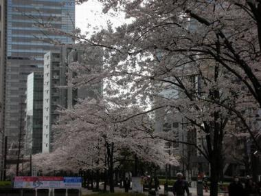 新宿にて 001