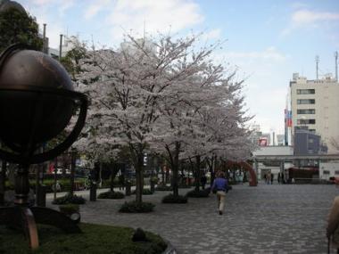 新宿にて 002