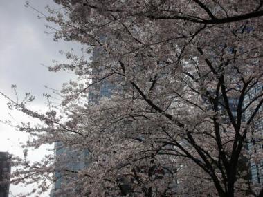 新宿にて 004
