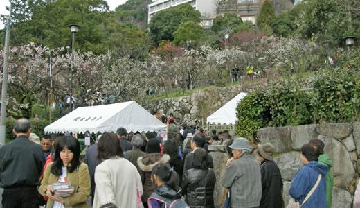 摂津岡本梅まつり2010-1