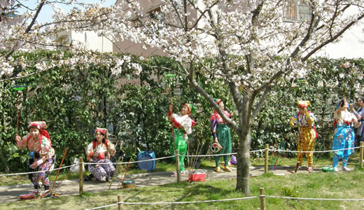 岡本南公園観桜会2010-2