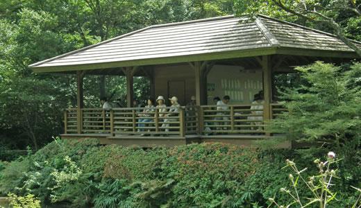 9月の高山植物園と森林植物園-1