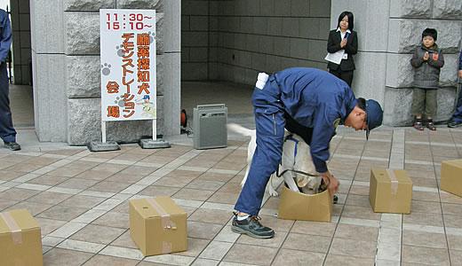 神戸税関庁舎特別公開2010(3)-2