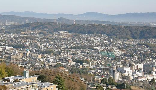 2011阪神・近鉄沿線初詣巡り・宝山寺(2)-4