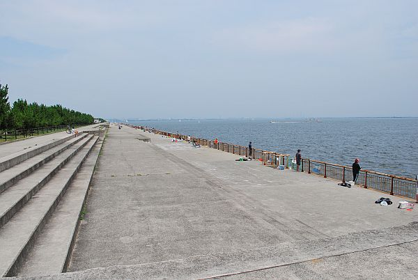 南緑地堤防
