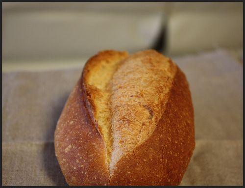 2008/12/13ドンクのパン1