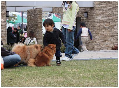 2009/3/29花見4