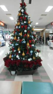 空港クリスマスツリー