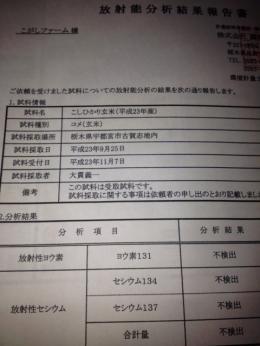 米放射能検査☆