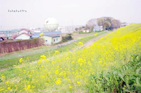 itigo_20130421004628.jpg