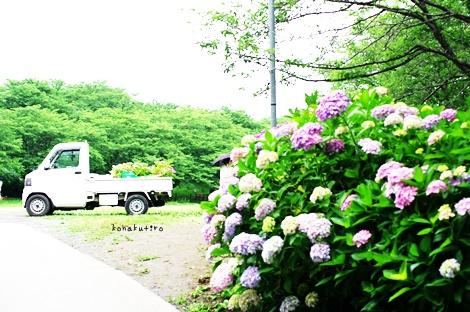 keirora2.jpg