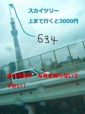 s-11s-8P1070246.jpg