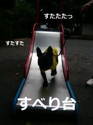 s-14P1070547.jpg