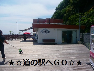 s-17P1070857.jpg