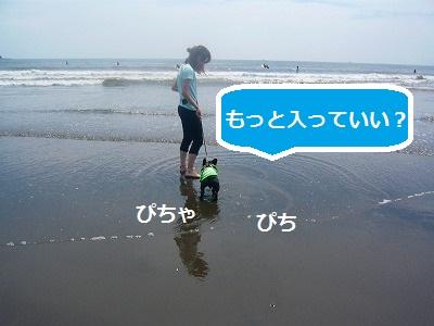 s-17P1070964.jpg