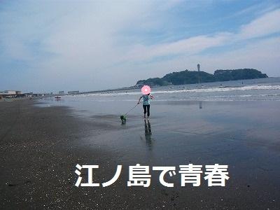 s-17P1070971.jpg