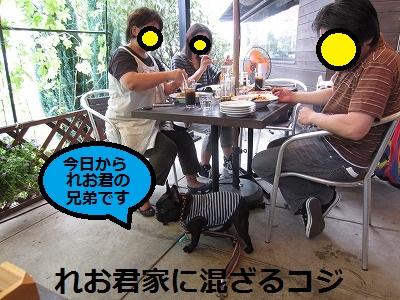 s-20IMG_0359.jpg
