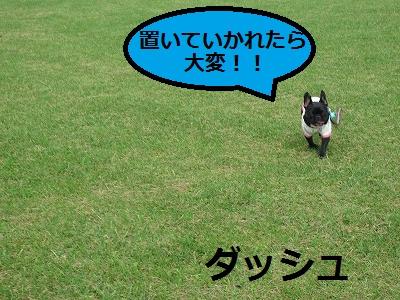 s-20IMG_0523.jpg